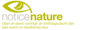 NoticeNature Logo